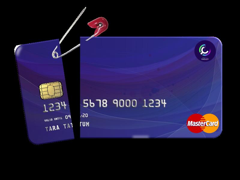Professional Credit Repair